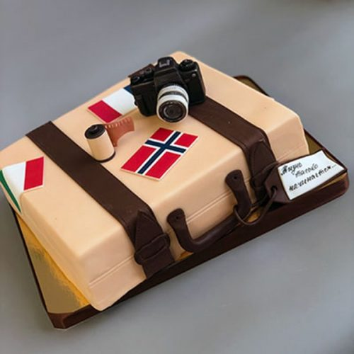 Торт чемодан путешественника с фотоаппаратом