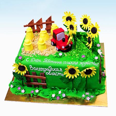 Торт поле с трактором и подсолнухами агроному